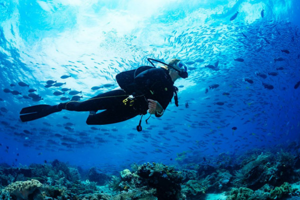 Top 5 Benefits of Scuba Diving