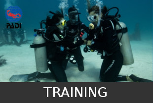 Scuba Diving Training PADI Costa Rica