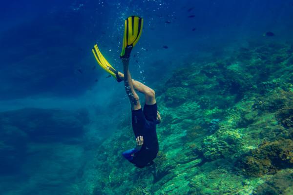 Snorkeling in Caño island reef