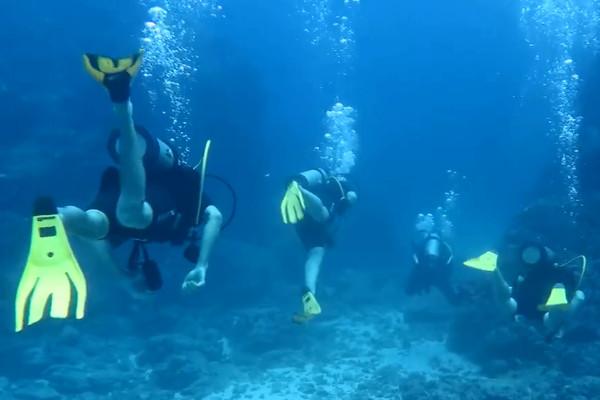 Divers at Caño Island north pinnacle
