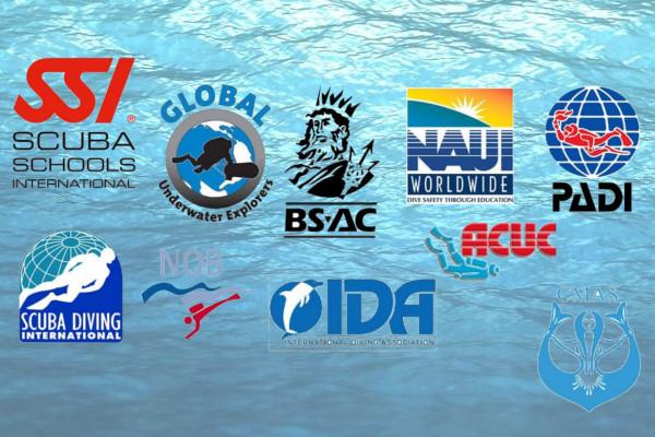 Scuba Diving Organizations