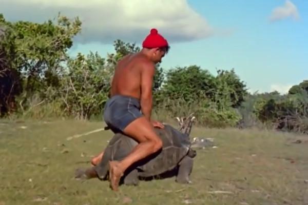 Jacques Cousteau Team member riding a tortoise.